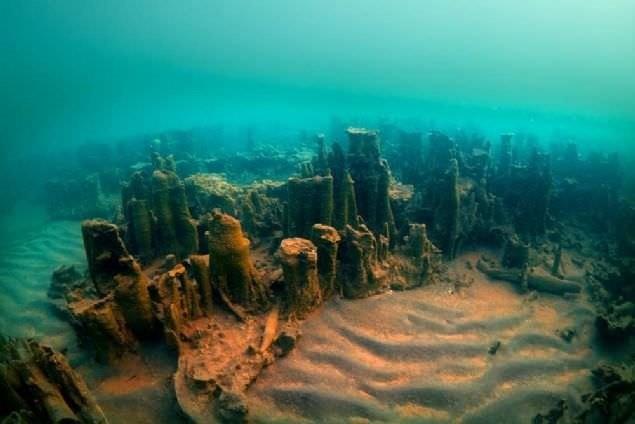 Worldu2019s largest microbialites in the depths of Lake Van.