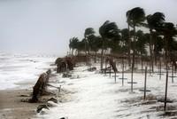 3 dead, 40 missing as Cyclone Mekunu hits Oman, Yemen
