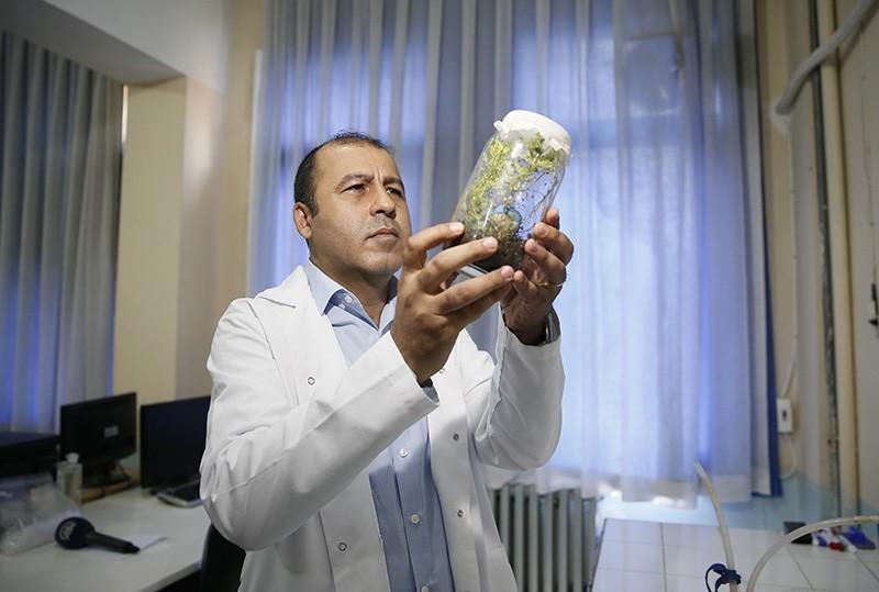 Turkish researcher Sinan Anlau015f (AA Photo)