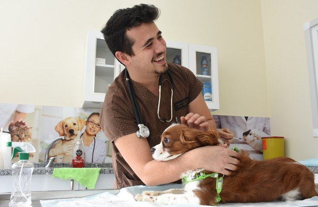 Kabasakal treats animals in his clinic at Bartın.