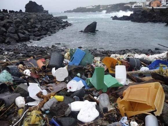 The level of plastic litter scattered across the world's oceans and seas has recently peaked, posing a serious threat to both human and animal life.
