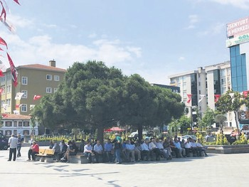A group of middle-aged and elderly men who are either unemployed or retired, sitting under the shadow of a tree in the main square of Esenyurt, June 18, 2019.