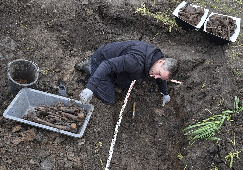 Joachim Kozlowski from the Volksbund charity that takes care of war graves, works at a mass grave in the town of Seelow, Germany, Monday, May 8, 2017 (DPA Photo)