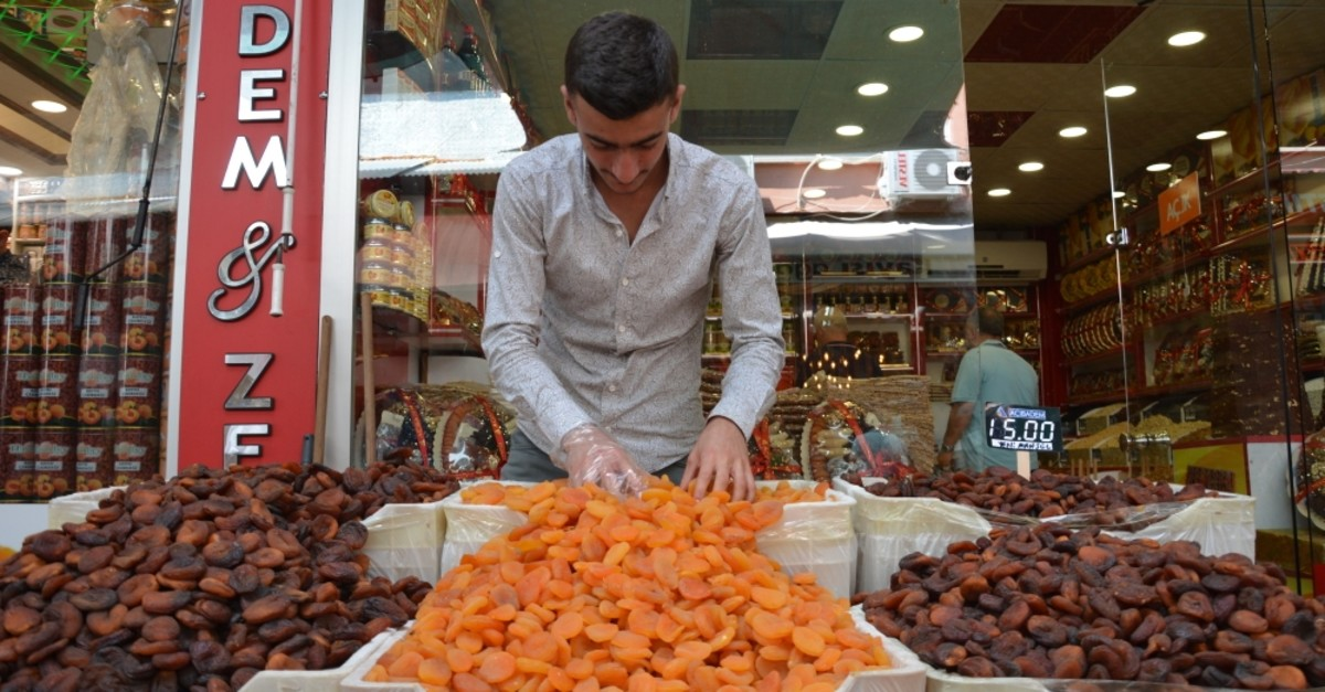 Malatya exported 99,461 tons of dried apricots from Aug. 1, 2018 to July 31 this year.
