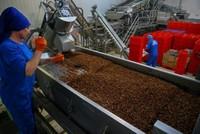 China's tariffs on US boost demand for Turkish raisins