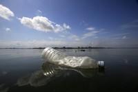 Forscher entdecken Mikroplastik im Menschen