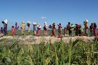 China setzt in der Krise um die aus Myanmar nach Bangladesch geflüchteten Rohingya auf eine diplomatische Lösung. Dazu legte der Außenminister Wang Yi bei einem Treffen von Außenministern in...