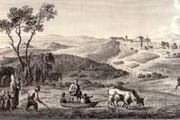 نبات القنب واستخداماته الصناعية في عصر الدولة العثمانية