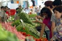 Wirtschaftsvertrauen steigt im November um 9,1%