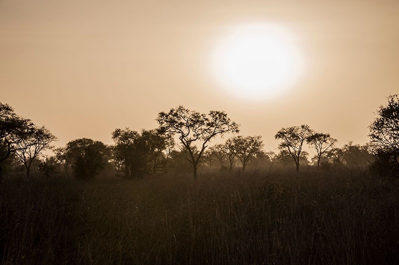 A picture taken on January 10, 2018 shows a general view of the landscape in late afternoon in Pendjari National Park, near Tanguieta, Benin. (AFP Photo)