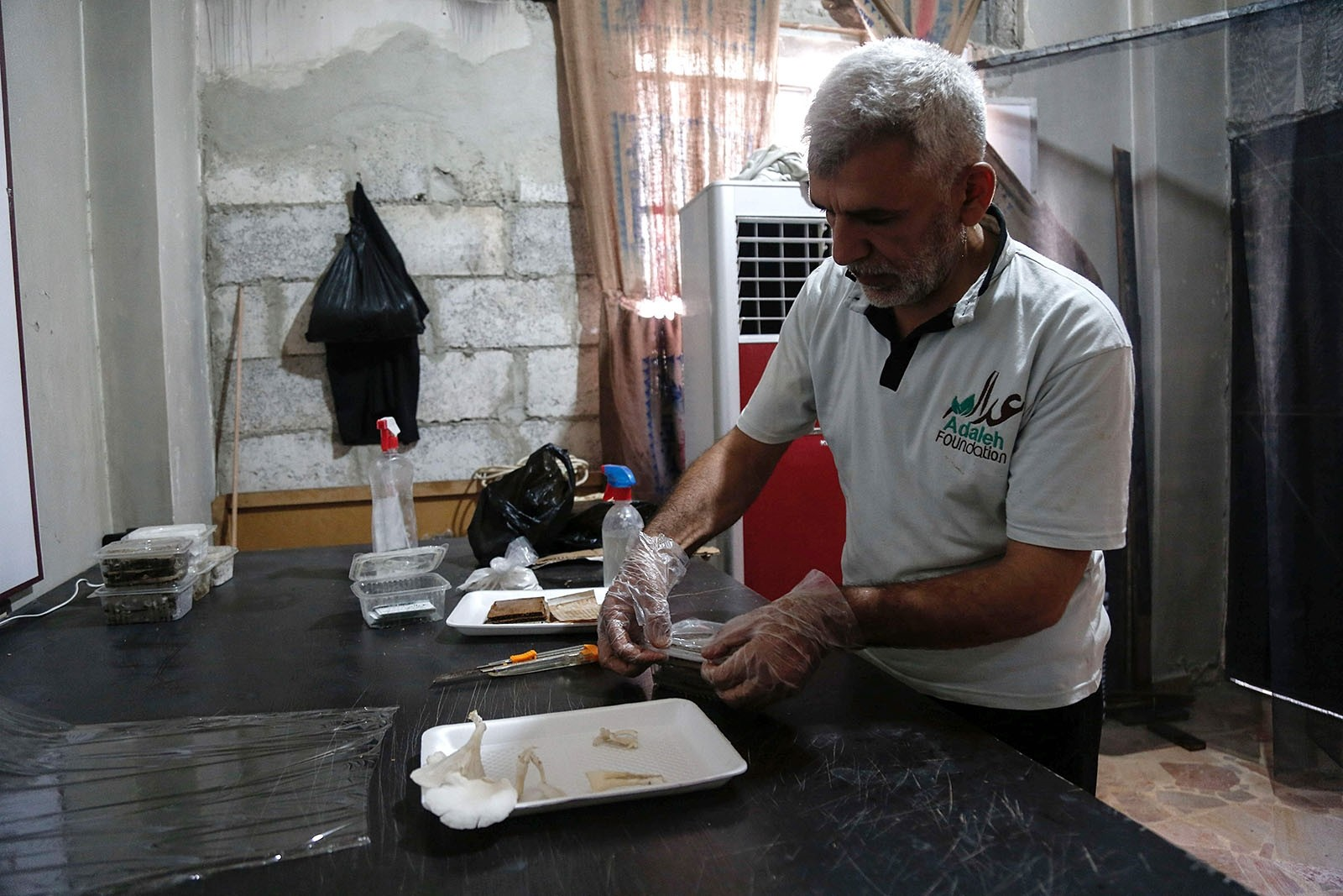 Syrians swap meat for mushrooms in hardship