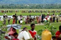 Acht Wochen nach dem Ausbruch der Gewalt in Myanmar und der Flucht von mehr als einer halben Million Rohingya suchen die Vereinten Nationen dringend Geld zur Versorgung der Geflüchteten.  In Genf...