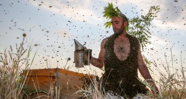 Turkish 'Bee-Man' all abuzz over world record quest