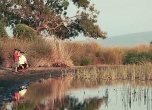 Turkey's Karacabey wetland home to rich biodiversity
