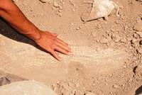 ماردين.. العثور على فسيفساء رومانية في أعمال تنقيب غير قانونية