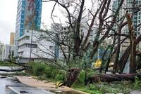 """Hurrikan """"Maria"""