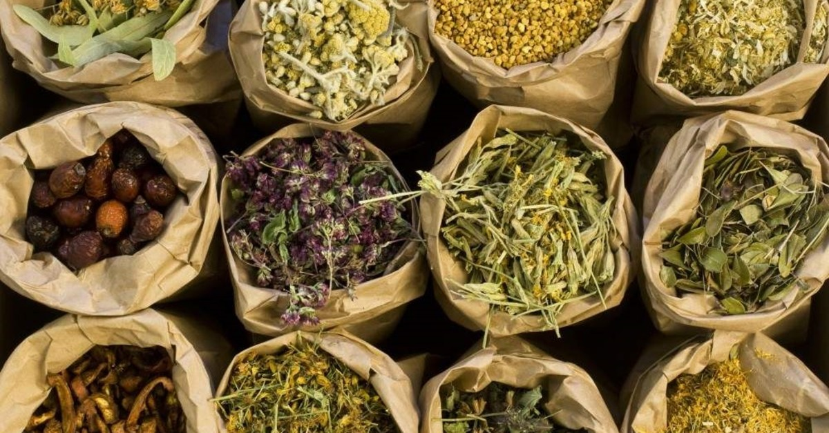 With the right herbs you can fight off flu this winter.