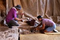اكتشفت فرق البحث عن الآثار عِظام حيوان ضخم داخل مغارة كرائين في منطقة دوشيملاتي بولاية أنطاليا، يُعتقد أنّه كان يعيش قبل 350 ألف عام.  وقال هارون تاشقيران رئيس فريق البحث وعضو الكادر التدريسي...