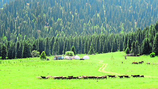 Kyrgyzstan where Turkic nomadic culture still lives