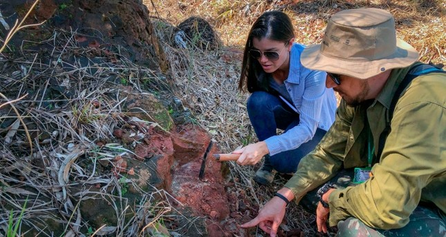 Handout picture released by the communications office of the State University of Maringa (UEM) of paleontologists working at the site where fossilised bones of a dinosaur were found in Maringa, Parana state (AFP Photo)